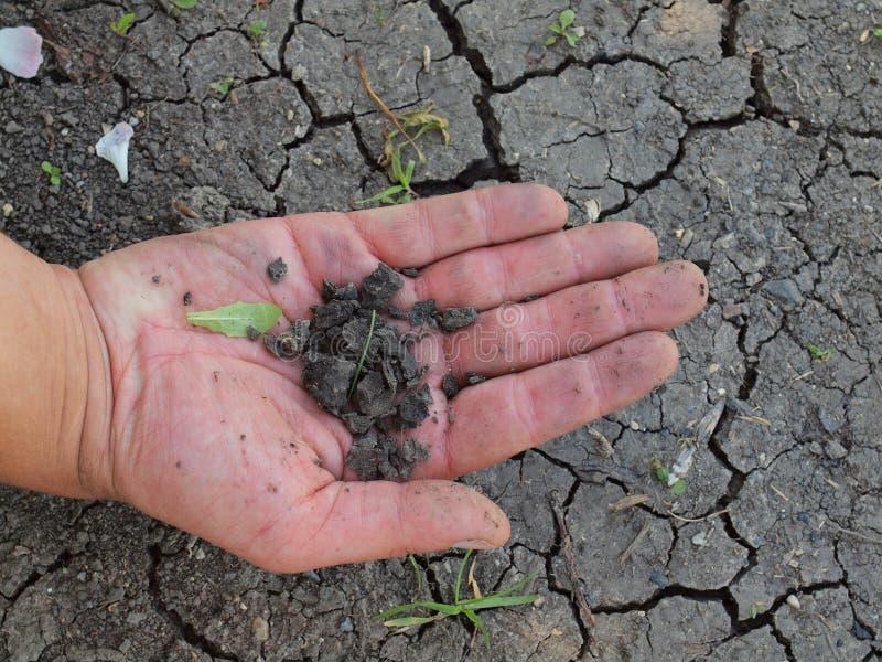破裂的黏土干燥片断在男性棕榈的 干燥破裂的cla 免版税库存照片