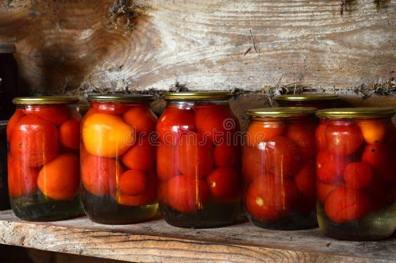 装于罐中的盐土植物家庭菜冬天 玻璃刺激腌汁 烂醉如泥的蕃茄 免版税库存照片