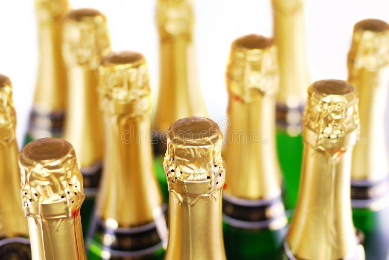 装瓶香槟 免版税库存照片