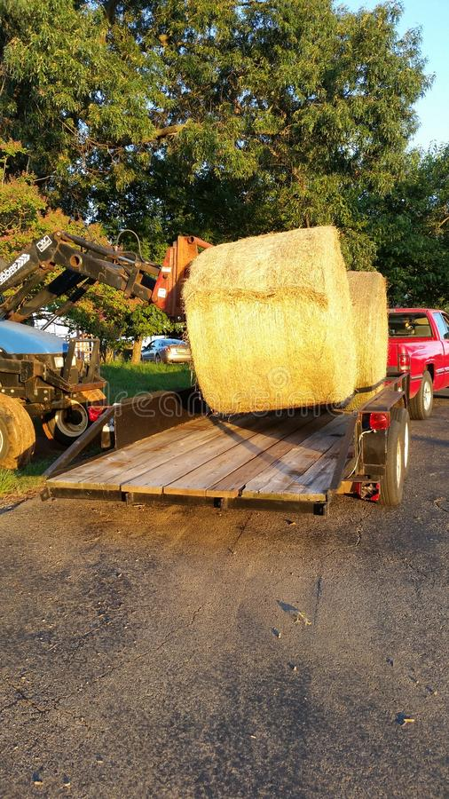 装载卷或大包干草在拖车 库存图片