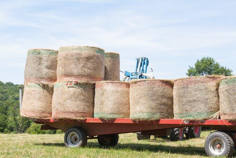 装载和堆积围绕干草捆在运输的一辆拖车 免版税图库摄影