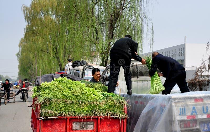 彭州,中国: 装载大蒜的农夫 免版税库存图片