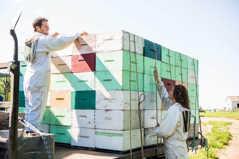 装载蜂窝条板箱的蜂农在卡车 免版税图库摄影