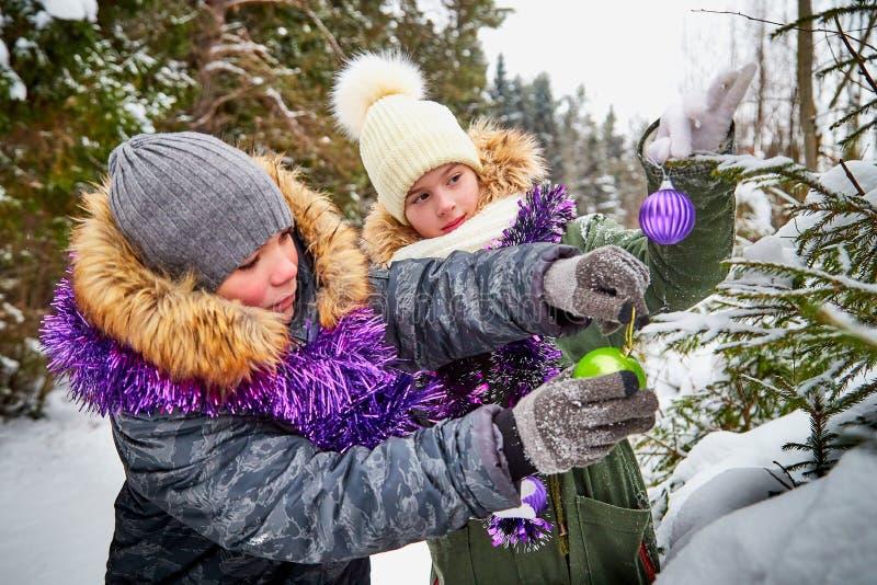 装饰一棵圣诞树的孩子在雪森林里在一个冬日 少年获得休息和乐趣在室外的周末 免版税图库摄影