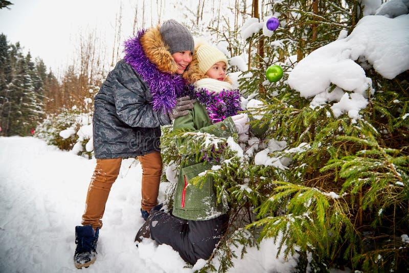 装饰一棵圣诞树的孩子在雪森林里在一个冬日 少年获得休息和乐趣在室外的周末 免版税库存照片
