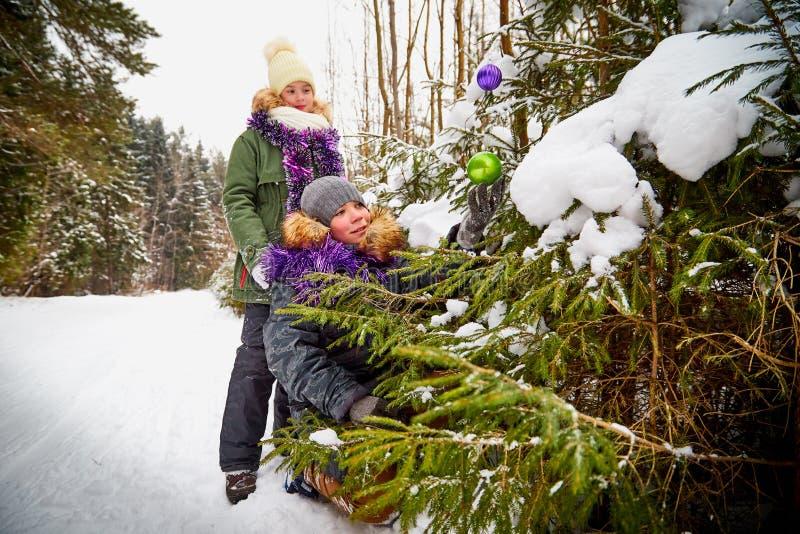 装饰一棵圣诞树的孩子在雪森林里在一个冬日 少年获得休息和乐趣在室外的周末 图库摄影