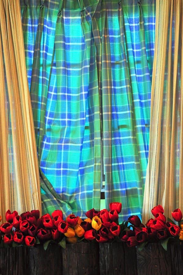窗口和帷幕 免版税图库摄影