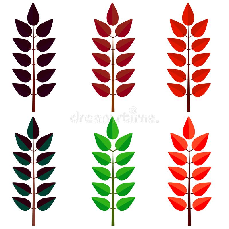 装饰叶子,集合 秋天,叶子秋天概念 r 向量例证