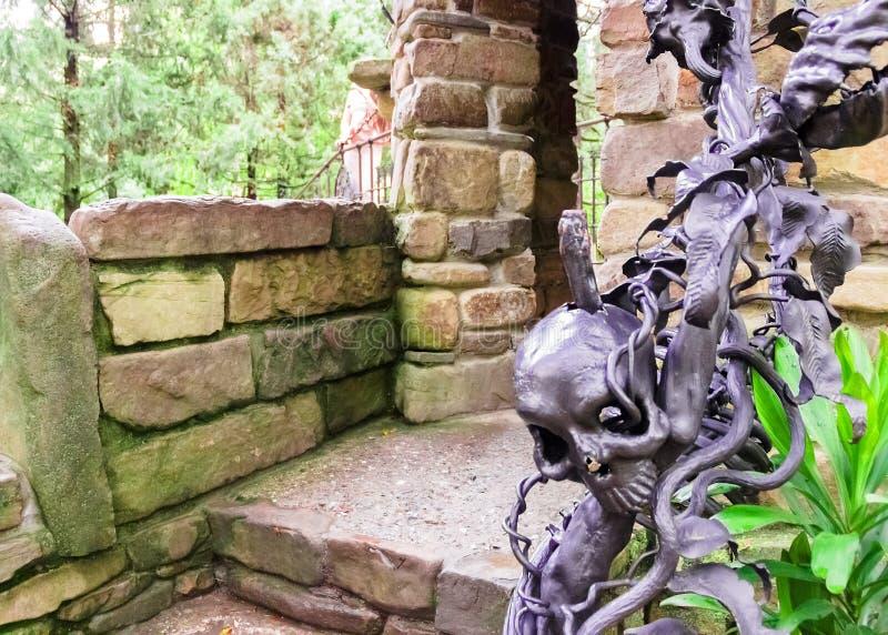 装饰品在从很大数量的黑金属玫瑰的公园 图库摄影