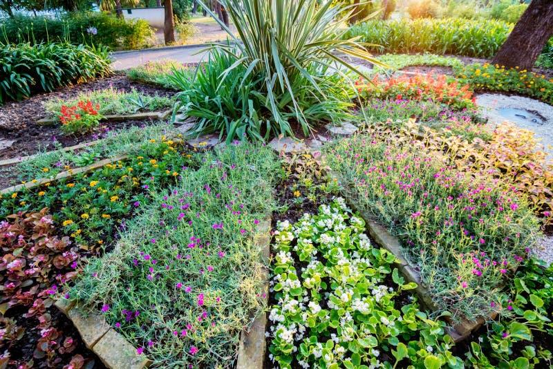 装饰圆花圃在有部分和不同的花的公园 库存照片