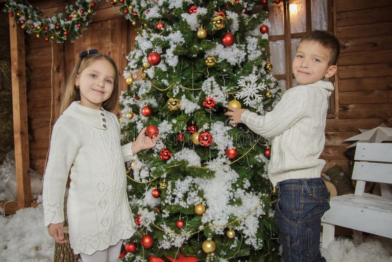装饰圣诞树的姐妹和兄弟 免版税库存图片