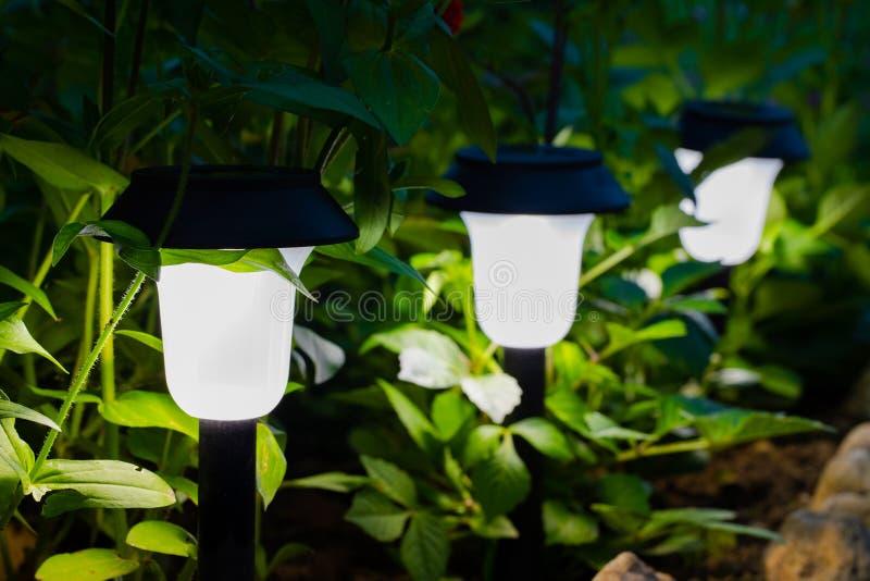 装饰小太阳庭院光,灯笼在花床上 免版税库存图片
