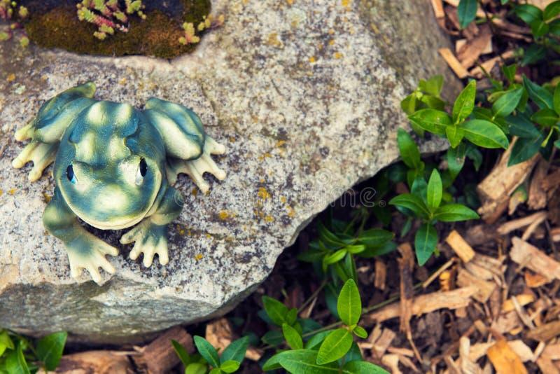 装饰有多汁植物的庭院青蛙假山花园 免版税库存图片