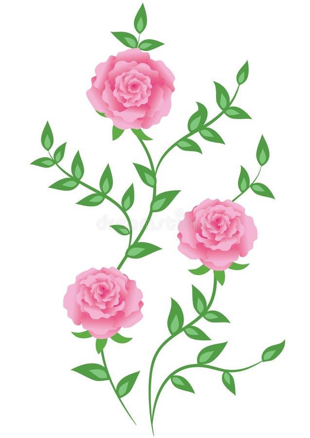 装饰玫瑰 向量例证