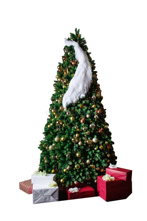 装饰的一棵美丽的豪华的圣诞树的时髦的演播室射击 免版税库存图片