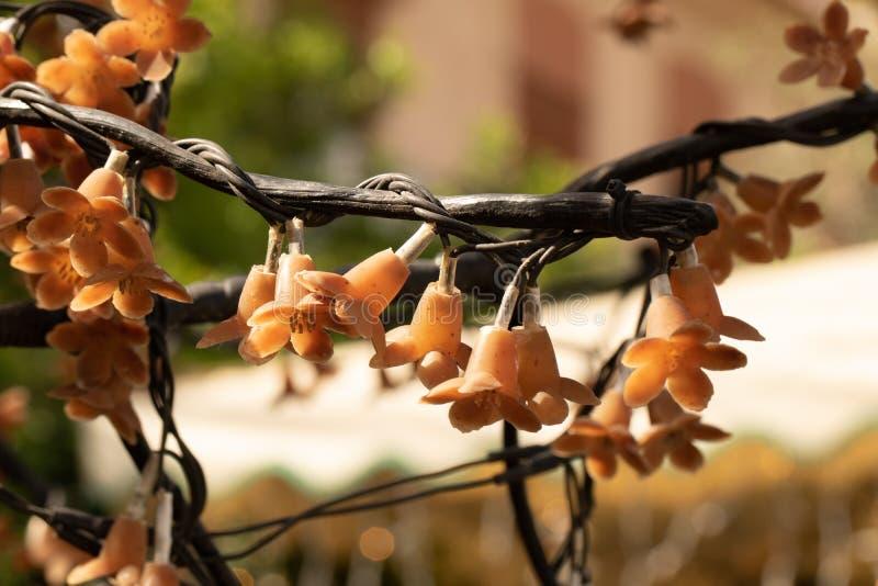 装饰的小橙色灯在树 免版税库存照片
