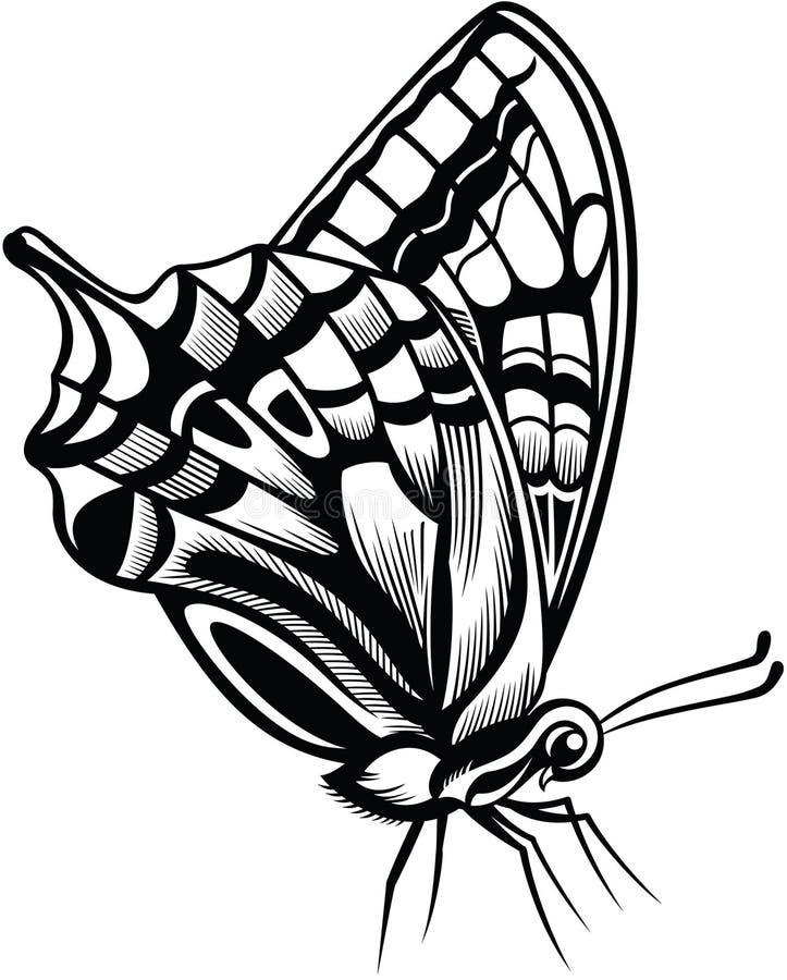 装饰的蝴蝶 库存例证