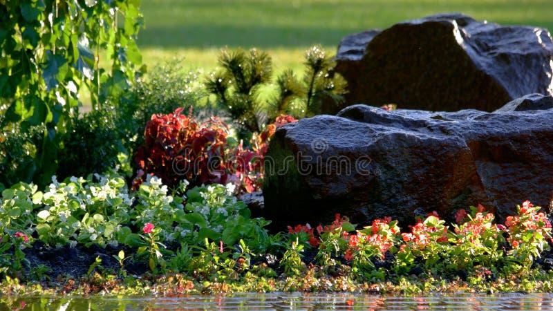 装饰石和五颜六色的花的关闭 库存图片