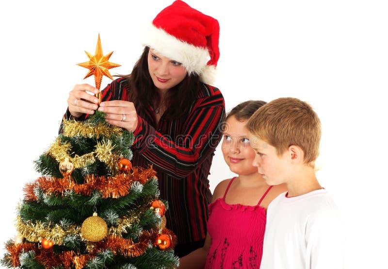 装饰结构树的圣诞节 库存照片