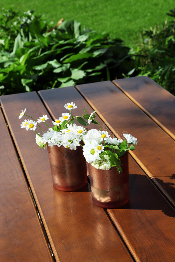 装饰罐头铜的雏菊 库存图片