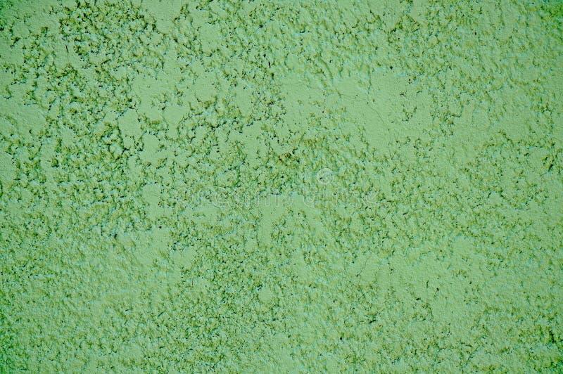 装饰膏药纹理  装饰膏药纹理  绿色背景 库存照片