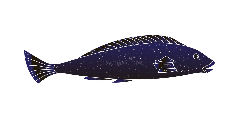 装饰风格化鱼 传染媒介概述例证,夜空在白色背景隔绝的颜色剪影 向量例证