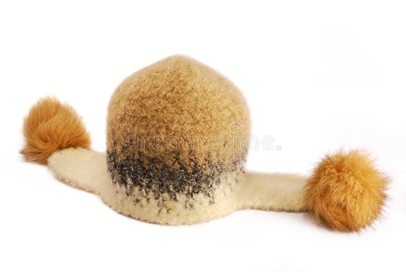 裘皮帽冬天羊毛 免版税库存图片