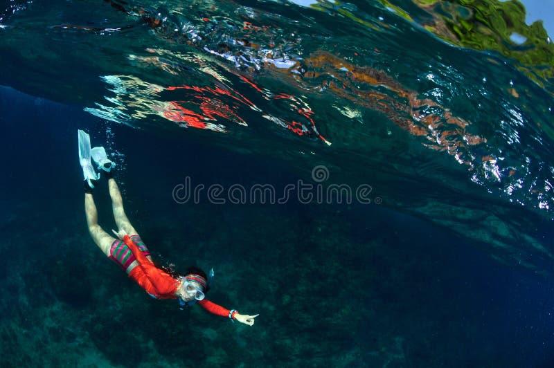 裸潜女孩无危险海洋 库存照片