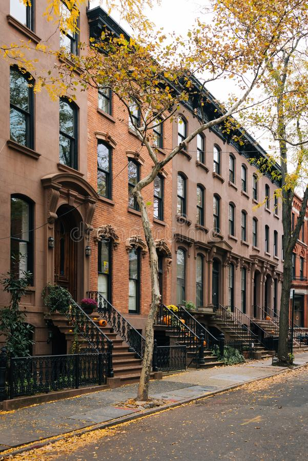 褐砂石和秋天颜色在布鲁克林Heights,纽约 免版税库存图片