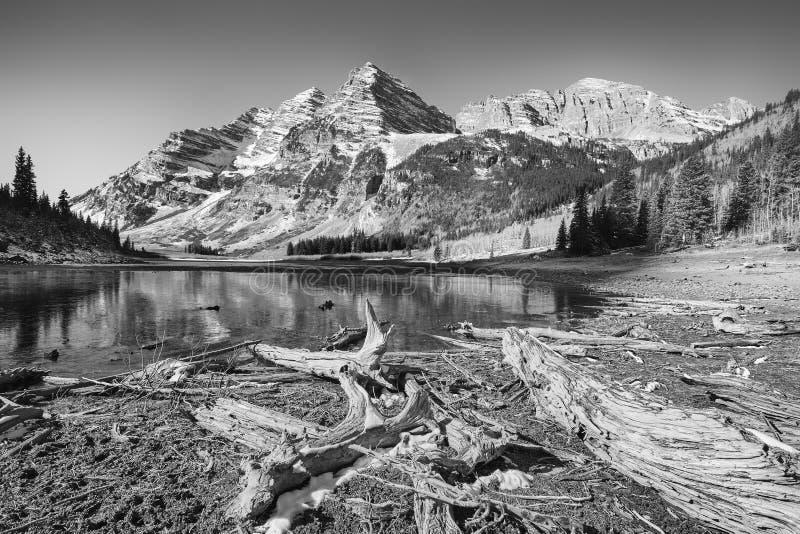 褐红的响铃黑白照片环境美化,科罗拉多,美国 免版税图库摄影