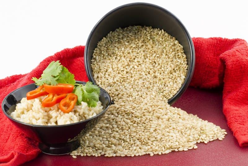 褐色煮熟的原始的米 免版税库存照片
