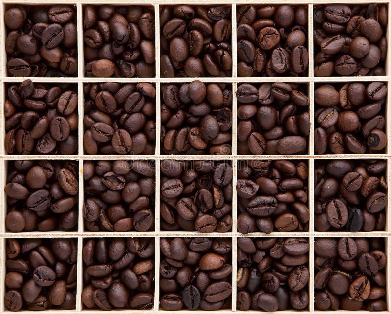 褐色的分类烤了在木箱集合的咖啡豆可以是 免版税库存照片