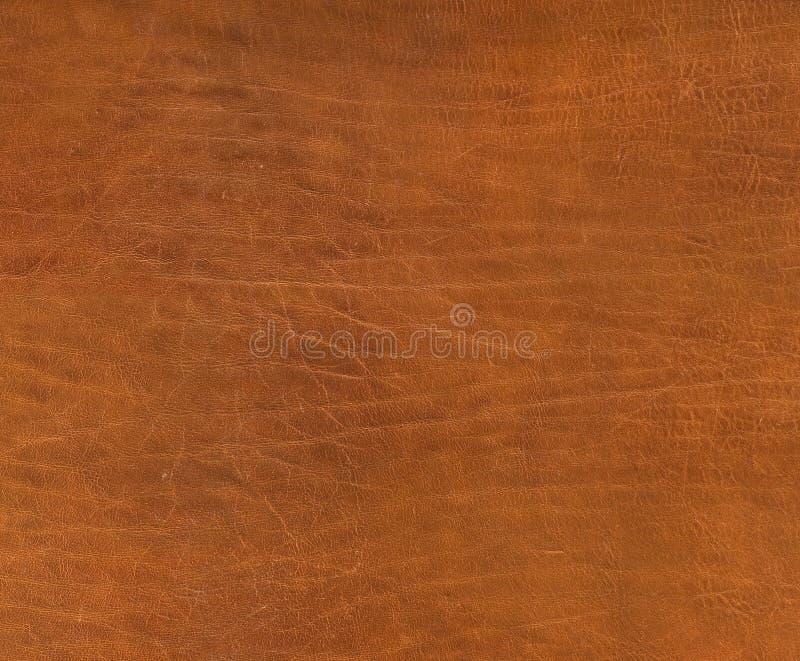 褐色聘用皮革纹理 免版税库存图片