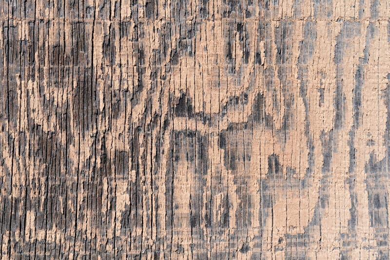 褪色米色油漆的旧胶合板 库存照片