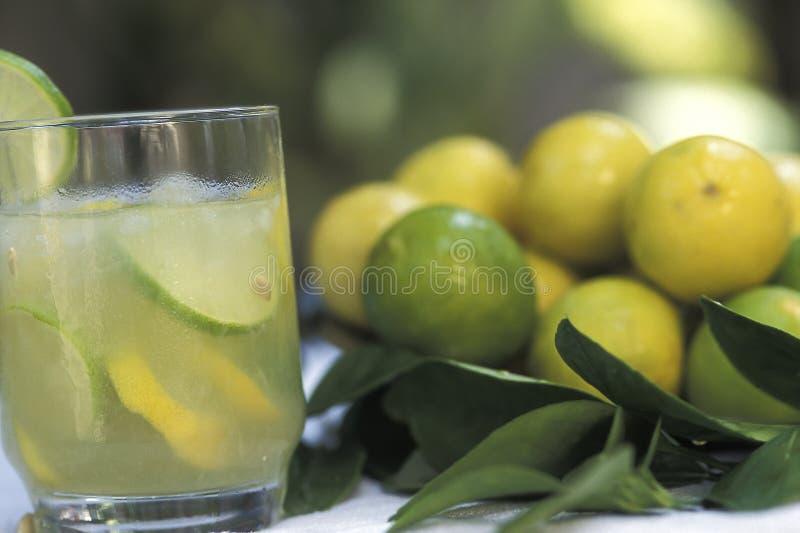 巴西人饮料:caipirinha 免版税库存图片