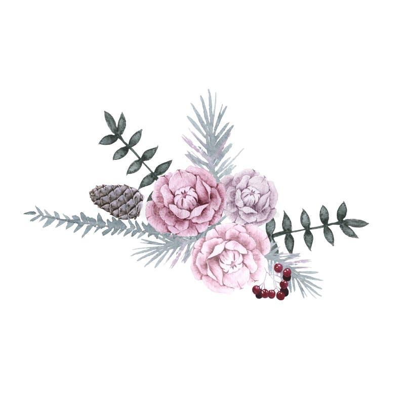 西伯利亚植物和花的构成 背景查出的白色 向量例证