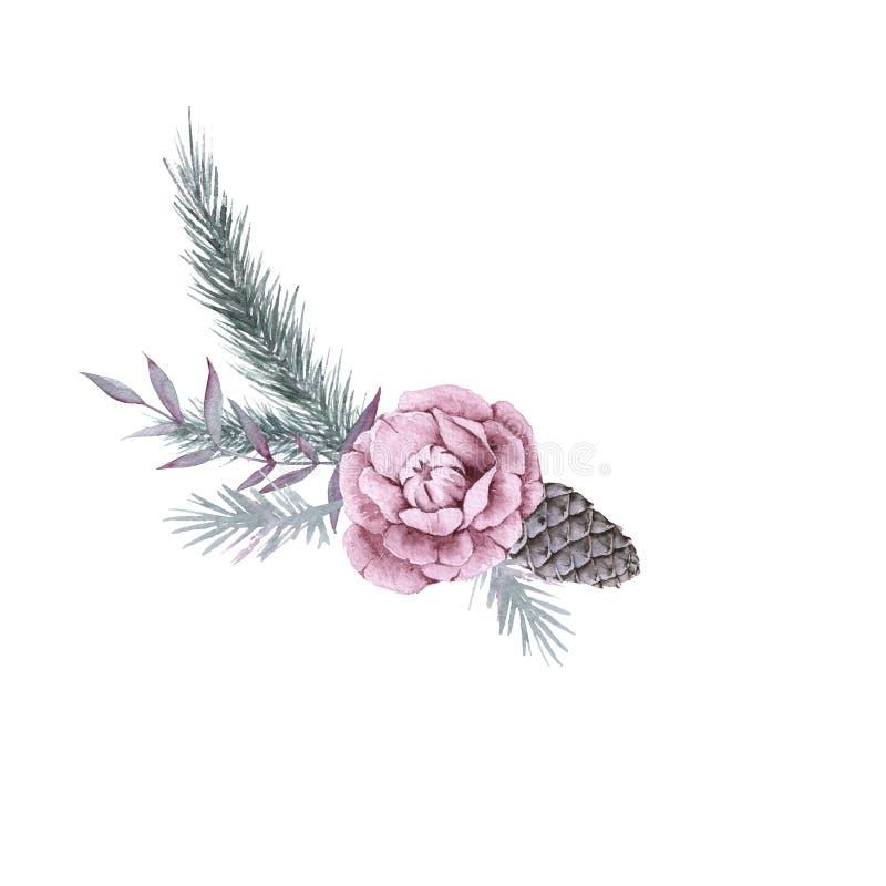 西伯利亚植物和花的构成 背景查出的白色 库存例证