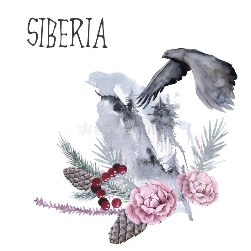 西伯利亚植物和花的构成 背景查出的白色 皇族释放例证