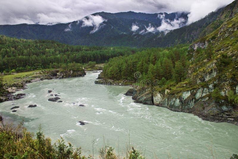 西伯利亚的美好的风景 免版税库存图片