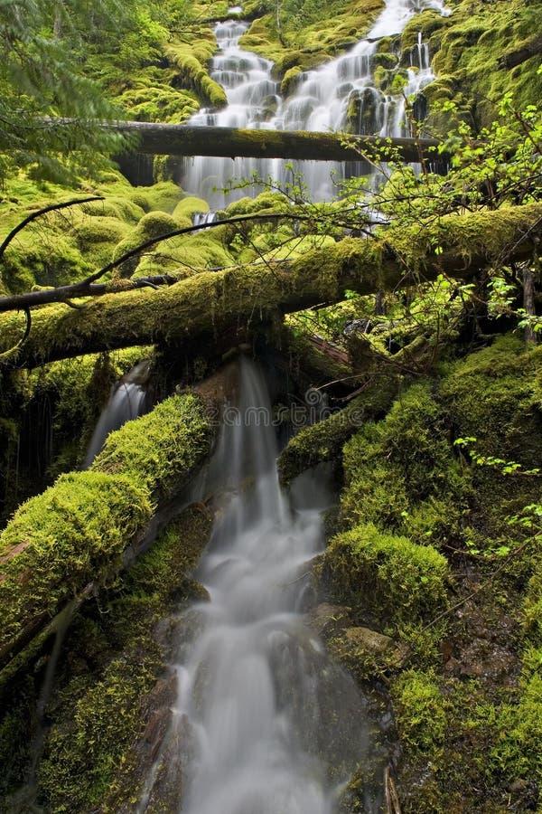 西北流瀑布 库存图片