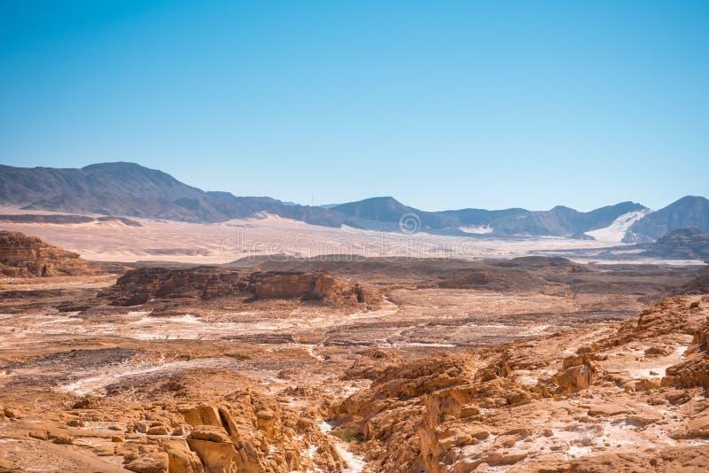 西奈沙漠风景 库存照片