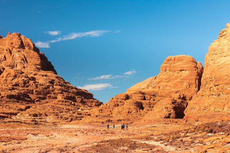 西奈沙漠风景 免版税库存照片