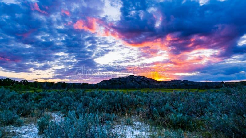 西奥多・罗斯福国家公园风景 免版税库存照片
