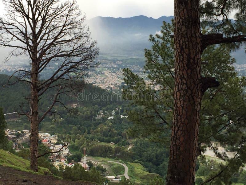 西姆拉山Abbotabad 免版税库存照片