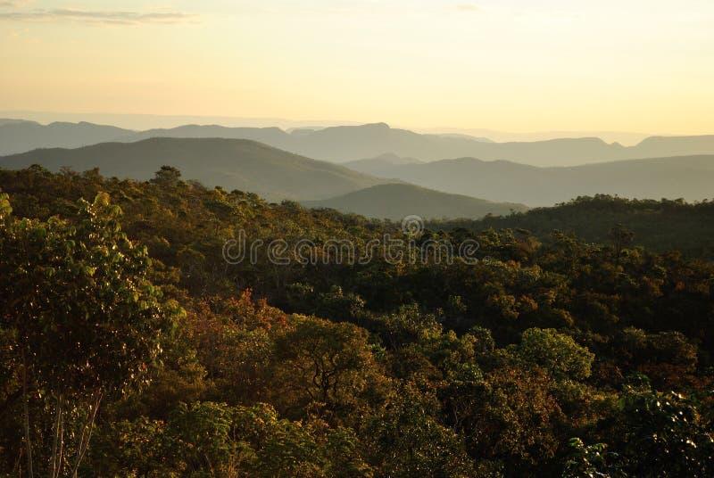巴西山 免版税库存图片
