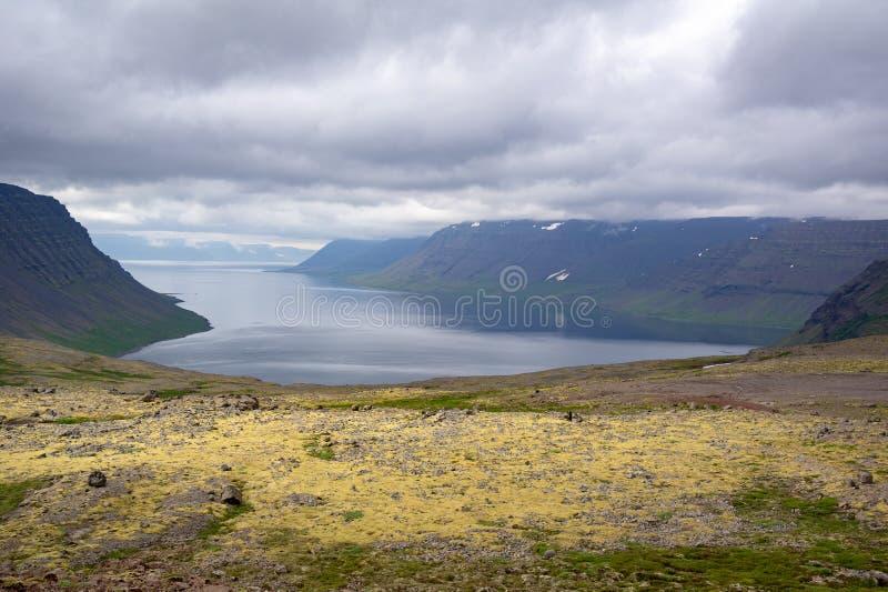 西峡湾区剧烈的风景在多云天气的冰岛 图库摄影