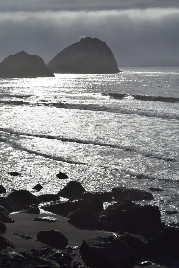 西海岸海岸线冰砾 库存图片