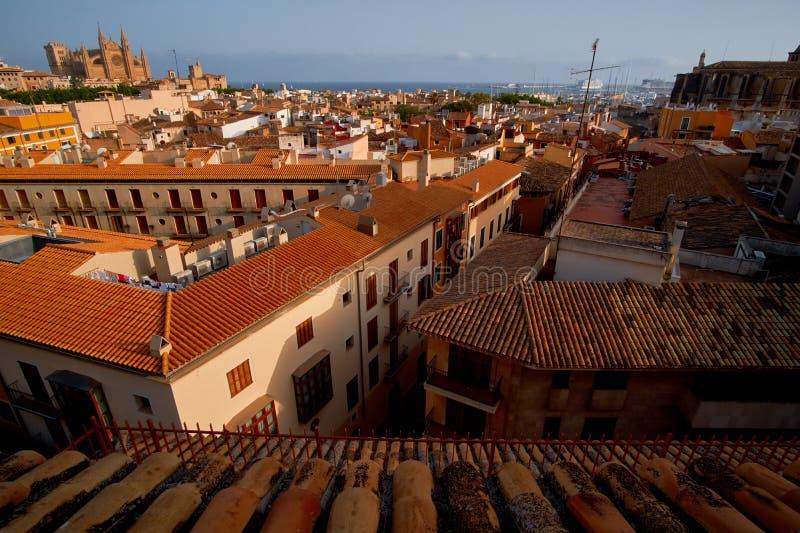 西班牙帕尔马历史的市中心有哥特式大教堂La Seu的看法 达成协议色greyed的区拜雷阿尔斯夹子包括海岛映射路径替补被遮蔽的状态周围的领土对植被 库存照片