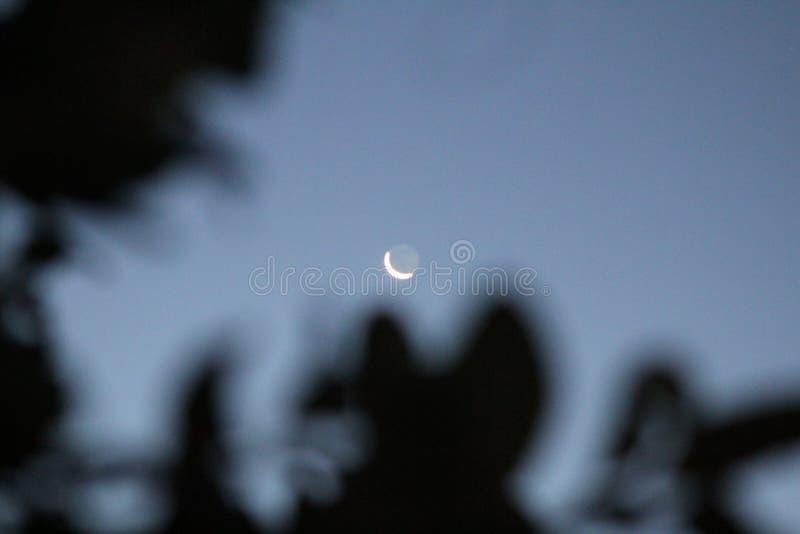 西班牙月亮 免版税库存图片