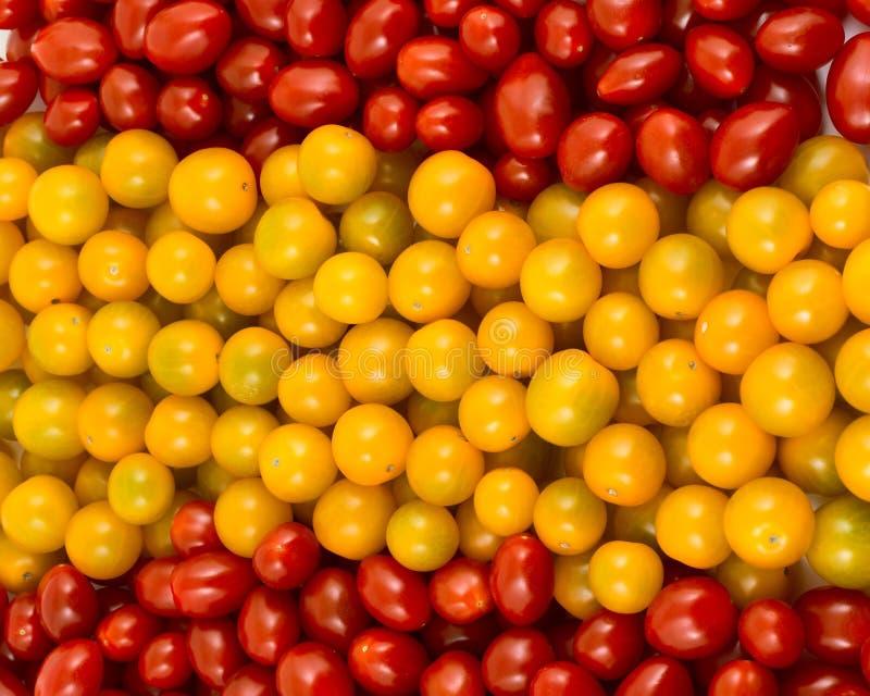 西班牙标志形成了蕃茄 免版税库存图片